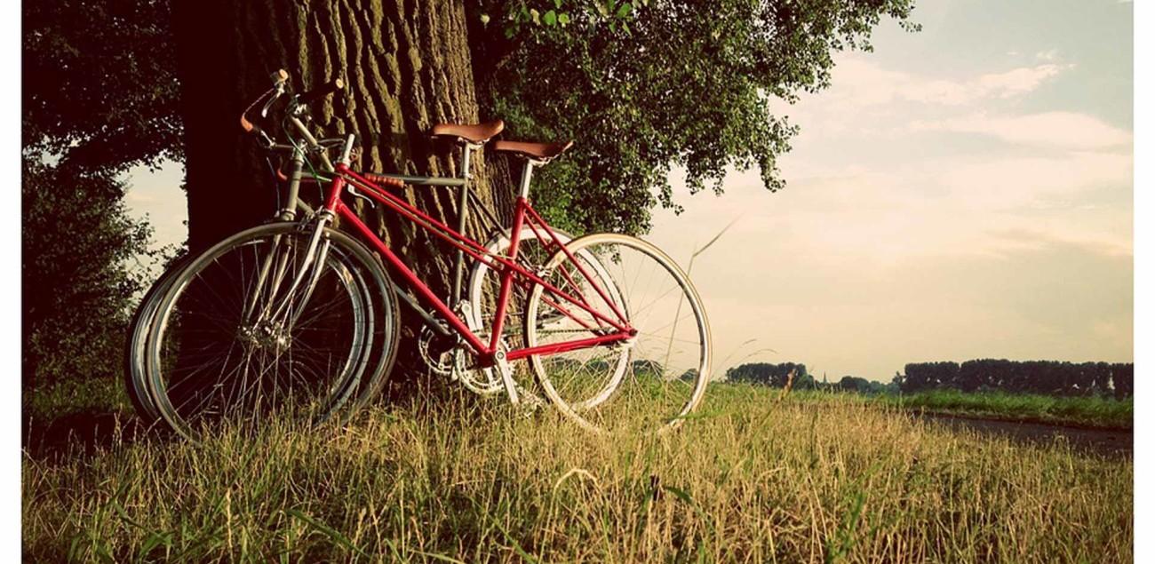 10--les-pieds-sur-le-vélo---(BALADE-ECOLO)-version-web